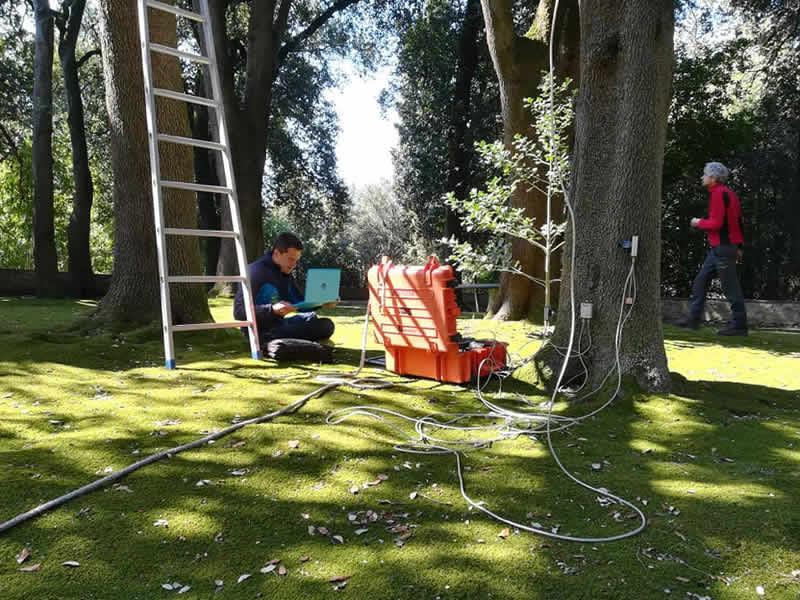 Studio Landscape Varese - Arboricultura