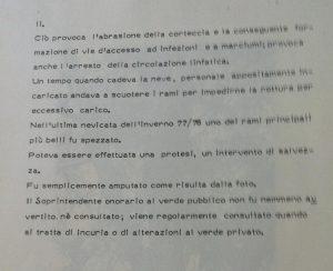 cedro-monumentale-villa-mirabello-controllo-di-fitopatologie-rilevabili